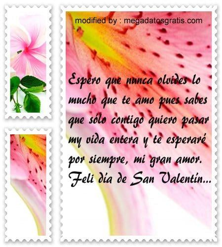 Poemas lindos para San Valentin,tiernas dedicatorias para el dia de los enamorados