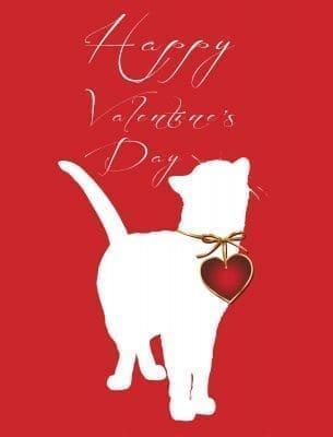 Mensajes por el Día del amor y amistad | Frases de amor
