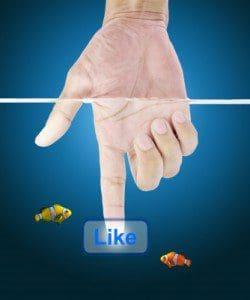 dedicatorias para dejar en facebook, citas para dejar en facebook, frases para dejar en facebook, mensajes de texto para dejar en facebook, mensajes para dejar en facebook, palabras para dejar en facebook, pensamientos para dejar en facebook, saludos para dejar en facebook, sms para dejar en facebook, textos para dejar en facebook, versos para dejar en facebook