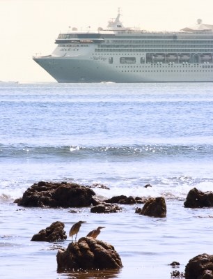 Cuales son los mejores cruceros en el Caribe