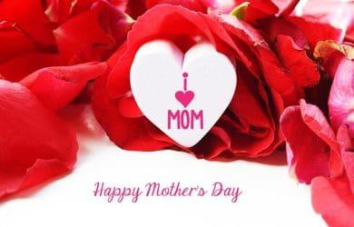 buscar palabras por el Día De La Madre, bajar lindas frases por el Día De La Madre