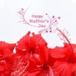 nuevos textos por el Día De La Madre para mi Mamá, las mejores frases por el Día De La Madre para tu Mamá
